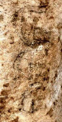 Пещера Лос Мурцелагос