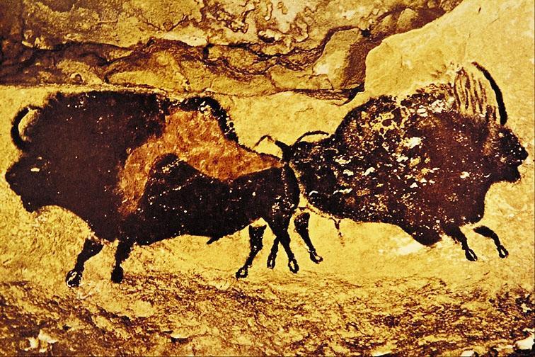 Древние буйволы